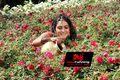 Vintha Katha Picture
