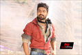 Anjaan Picture