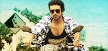 Bollywood Cinematographer for Thani Oruvan remake
