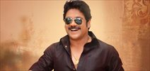 Nagarjuna's cameo confirmed in Majnu