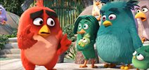 Trailer  - The Angry Birds Movie