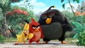 The Angry Birds Movie Picture