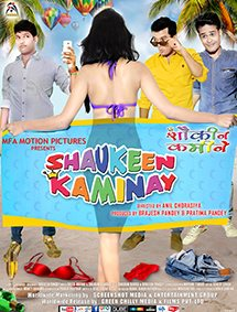 Shaukeen Kaminay Movie Wallpapers