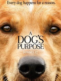 A Dog's Purpose Movie Pictures