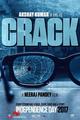 Crack Picture