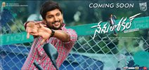 Nenu Local Breaches 30 Crore Mark