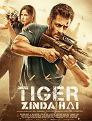All about Tiger Zinda Hai
