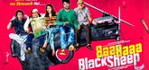 Baa Baa Black Sheep - First Look Poster