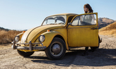 Bumblebee Picture