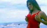 Wafaa Video