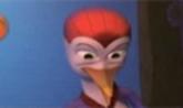 Bird Idol Video