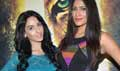 Media Meet Of Roar - Tigers Of Sunderbans