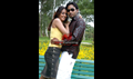 Picture 221 from the Telugu movie Brahma