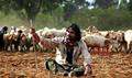 Picture 5 from the Kannada movie Savari