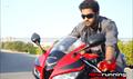 Picture 25 from the Telugu movie Brindaavanam