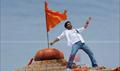 Picture 19 from the Telugu movie Brindaavanam
