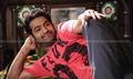 Picture 15 from the Telugu movie Brindaavanam