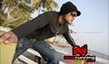 Picture 30 from the Telugu movie Iddaru Monagallu