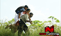 Picture 24 from the Tamil movie Nandalala