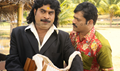 Picture 51 from the Malayalam movie Nirakazhcha