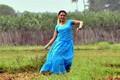Picture 7 from the Malayalam movie Vairam