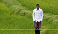 Picture 8 from the Telugu movie Mr. Perfect