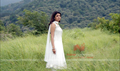 Picture 5 from the Telugu movie Mr. Perfect