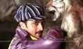 Picture 7 from the Kannada movie Shikari