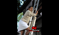 Picture 20 from the Malayalam movie Thanthonni