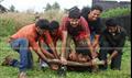 Picture 28 from the Malayalam movie Adhikaram