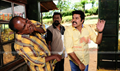 Picture 12 from the Malayalam movie Cobra