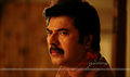 Picture 5 from the Malayalam movie Cobra