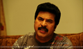 Picture 3 from the Malayalam movie Cobra
