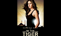 Picture 30 from the Hindi movie Ek Tha Tiger