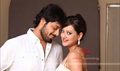Picture 8 from the Telugu movie Feel My Love
