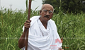 Picture 20 from the Hindi movie Gandhi To Hitler