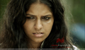 Picture 4 from the Malayalam movie Street Light