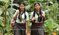 Picture 26 from the Malayalam movie Swapna Sanchari