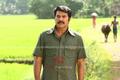 Picture 120 from the Malayalam movie Venicile Vyapari