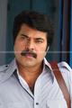 Picture 108 from the Malayalam movie Venicile Vyapari