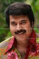 Picture 101 from the Malayalam movie Venicile Vyapari