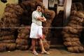 Picture 12 from the Malayalam movie Venicile Vyapari