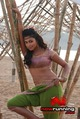 Picture 59 from the Tamil movie Vettai