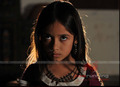Picture 6 from the Hindi movie Warning