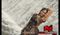 Picture 41 from the Malayalam movie Raghuvinte Swantham Rasiya