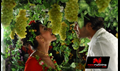 Picture 57 from the Telugu movie Action