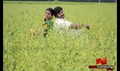 Picture 19 from the Tamil movie Amirtha Yogam
