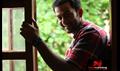 Picture 119 from the Malayalam movie Ayalum Njanum Thammil