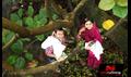 Picture 113 from the Malayalam movie Ayalum Njanum Thammil