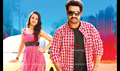 Picture 14 from the Telugu movie Dhammu